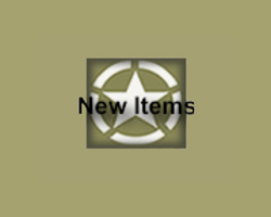 (A) New Items