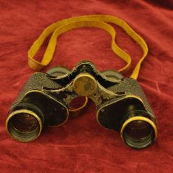 Japanese Field Binoculars